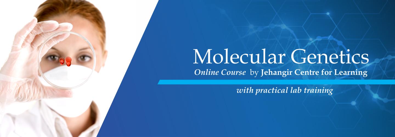 Molecular-genetics-4