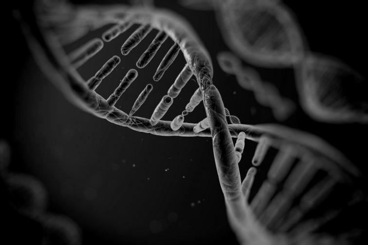 Genetics-and-Genomics-756×504-1-darken